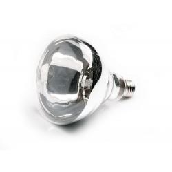 Żarówka BR40 - lampa do podgrzewania potraw 273906
